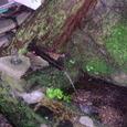 09.阿弥陀ヶ滝の水