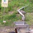 2.足助の水