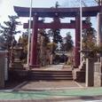 1.新橋浅間神社 「木の花名水 (このはなめいすい)」
