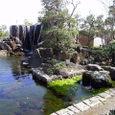 1.大井川港緑地公園の湧水(おおいがわこうりょくちこうえんのゆうすい) [静岡]
